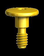 Healing Screw Replace Select TC RP 1 mm