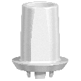 NobelPearl Abutment Straight Inter-X WP 1 mm