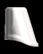 Plast/Tempコーピング15°エステティックAbut RP